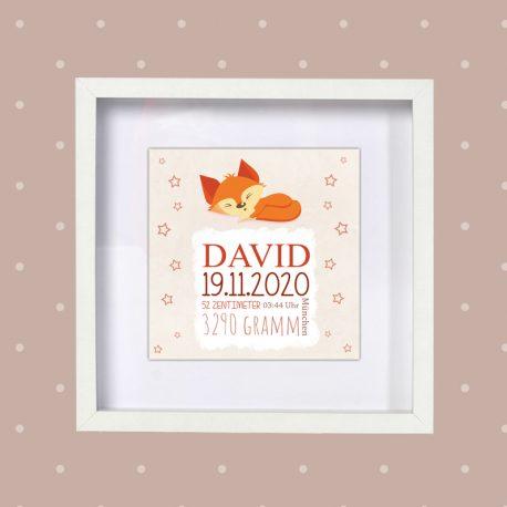 Poster Geburt Fuchs