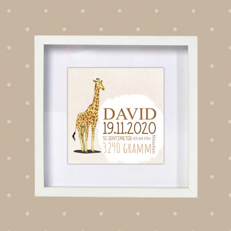 Poster Geburt Giraffe