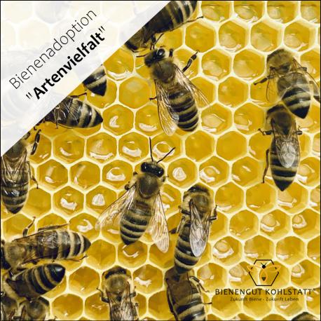Bienenadoption Artenvielfalt